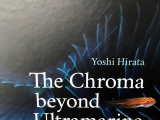 The Chroma beyond Ultramarine