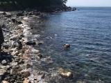 ベタ凪な秋の浜