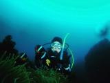 春濁りで緑色の海…