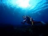 透明度100mの海