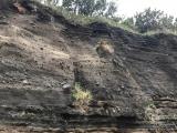 トウシキの地層