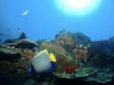 ヌサペニダらしいワイドな海