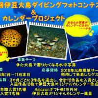 第3回伊豆大島フォト音テスト